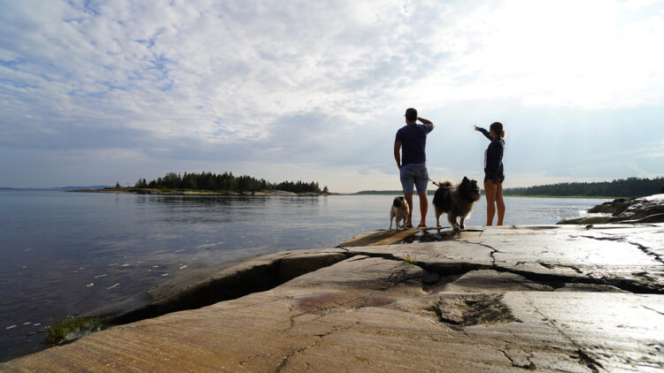 couple by the water with dogs